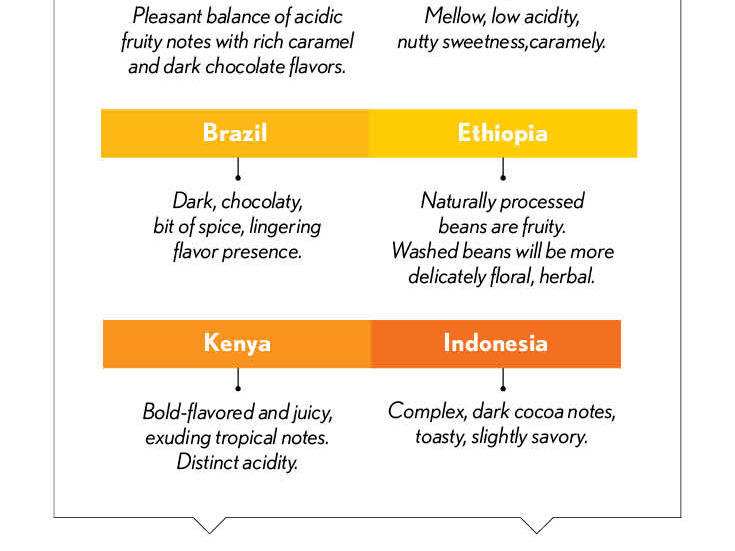 manual-coffee-infographic.jpeg