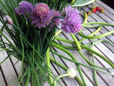 onion-chives.jpg