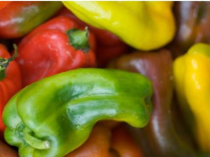 ugly-peppers.jpg