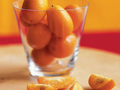 Winter Kumquats Guide