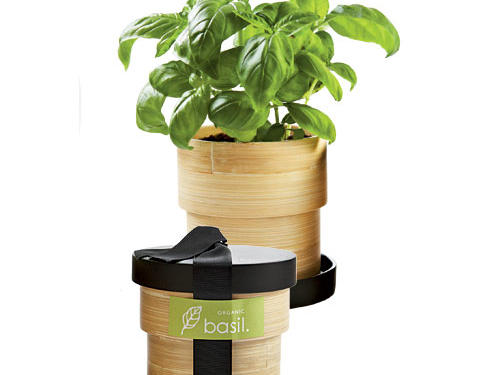 Potting Shed Creations Bamboo Grow Box Kits