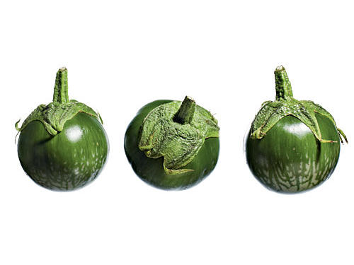1306 Lao Green Stripe Eggplant