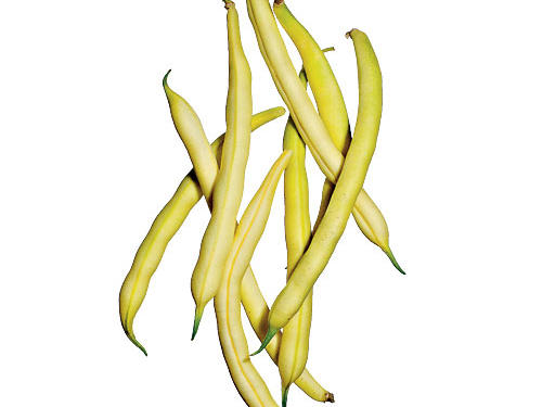 1306 Golden Wax Beans