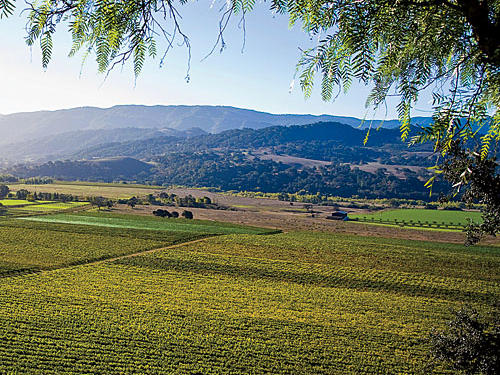 Central California Farm Stays