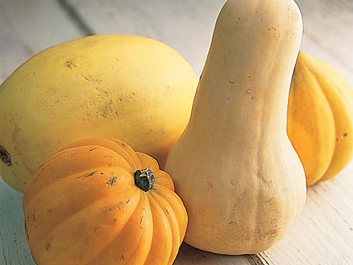 Winter squash abounds.
