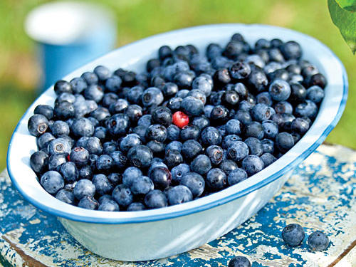 1206w Summer Produce Guide: Blueberries