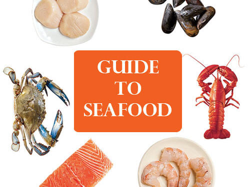 Guide to Fish and Shellfish