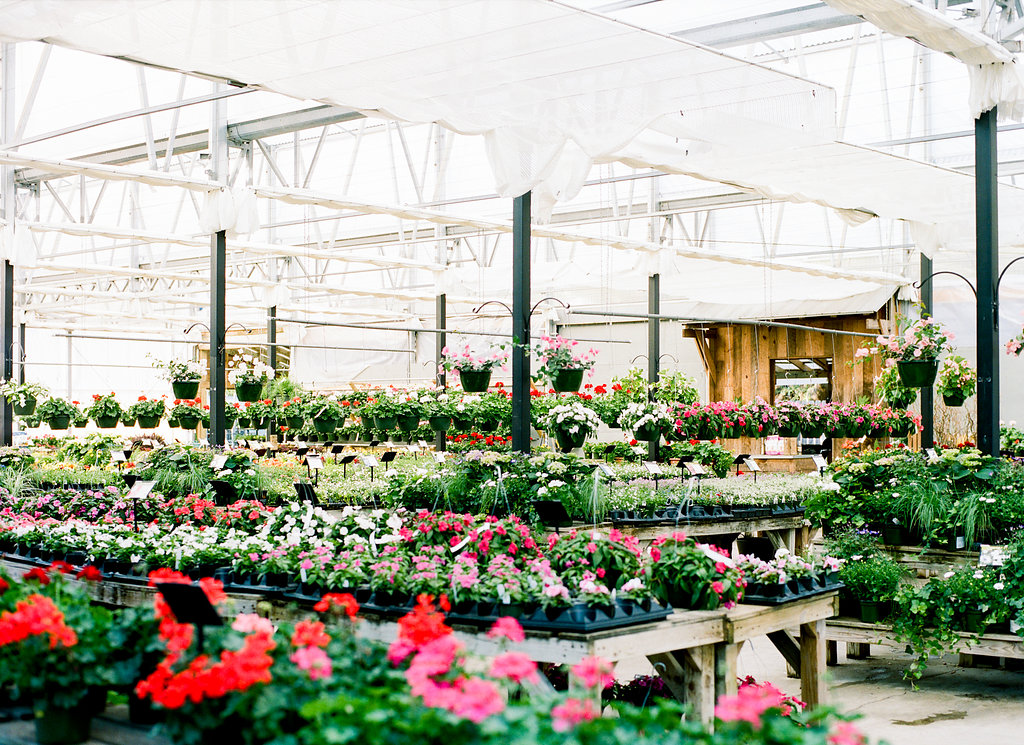 The South's Best Garden Stores 2020