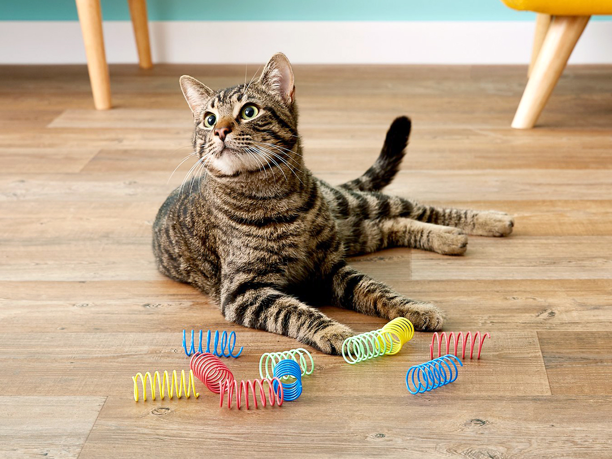 Ethical Pets Products cat spring toy