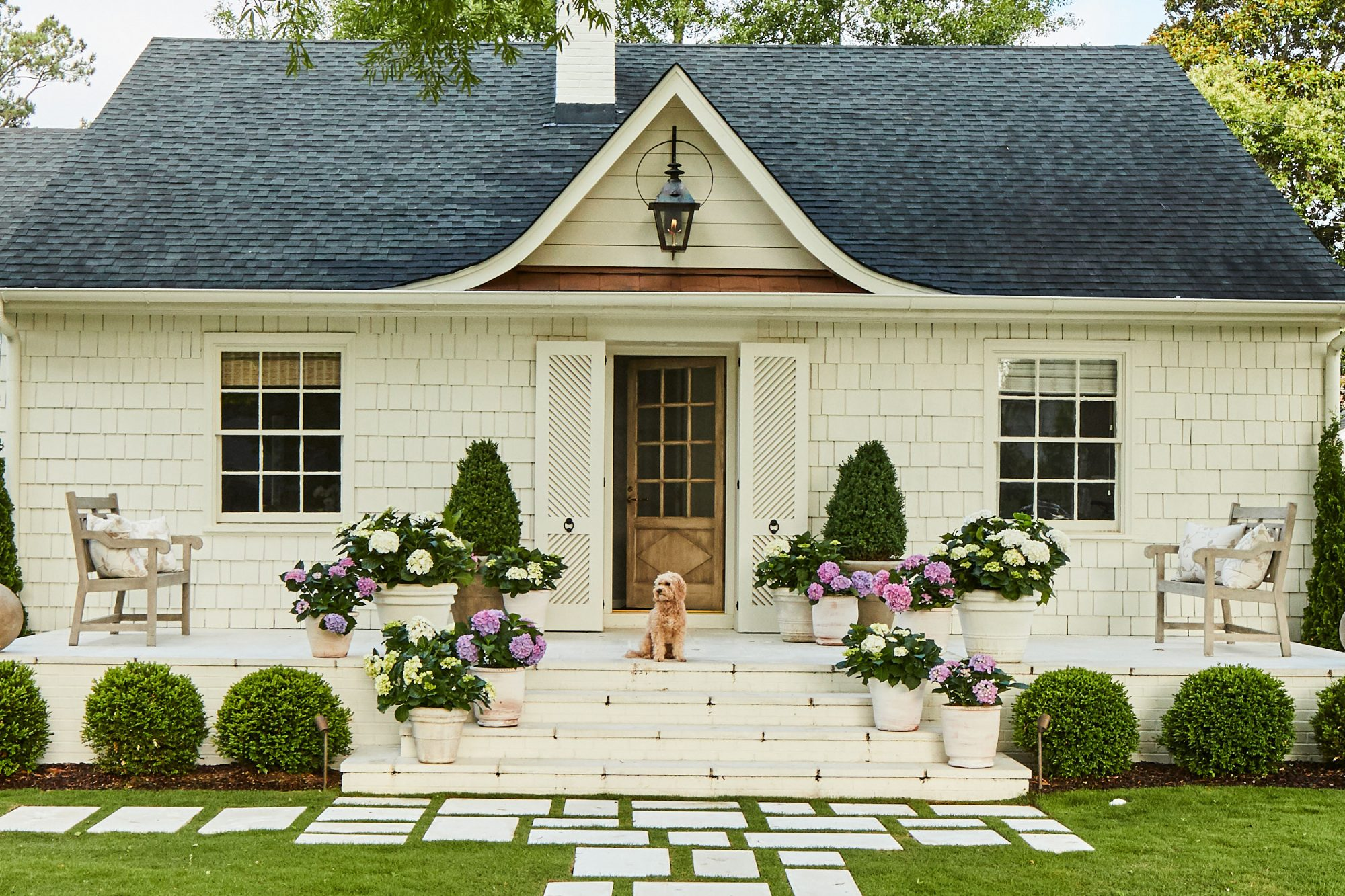 White House with potted pink and purple hydrangeas