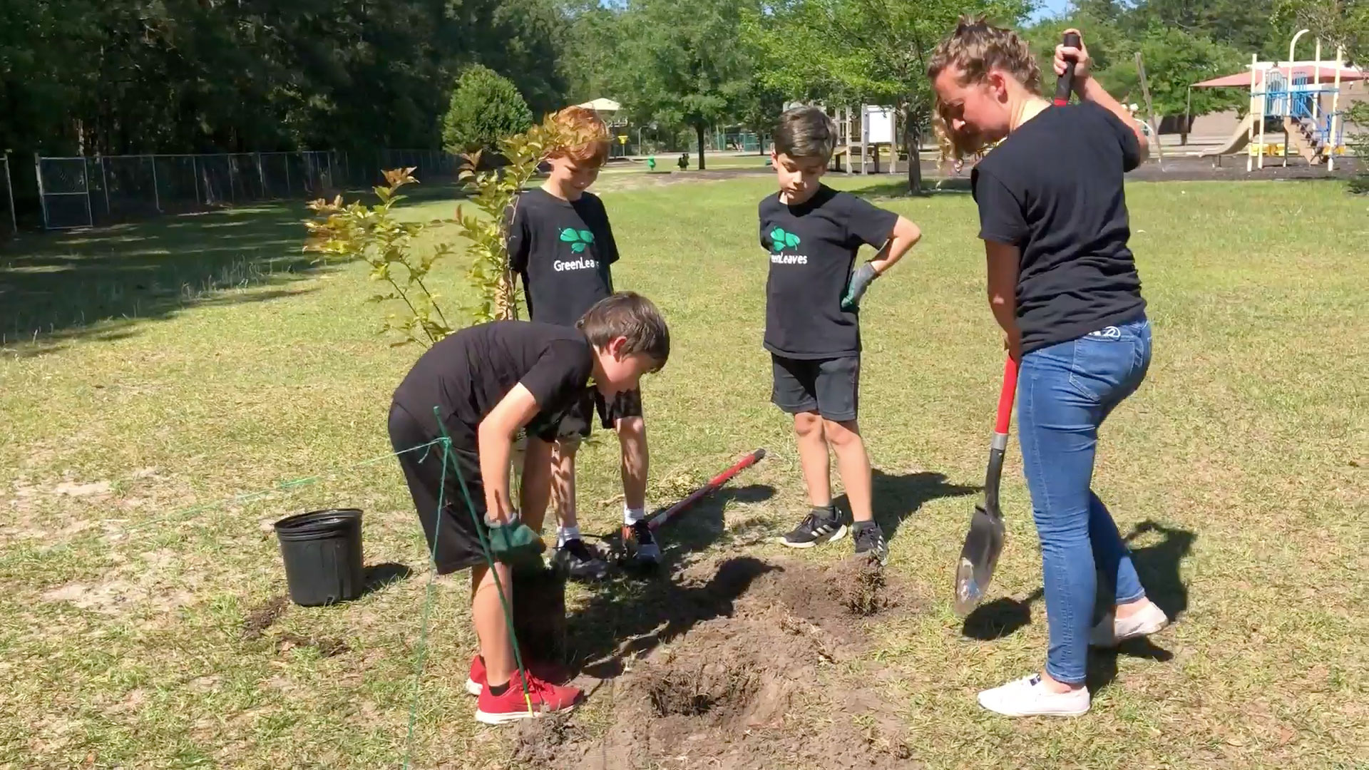 Green Leaves Tree Club Satilla Marsh Elementary School