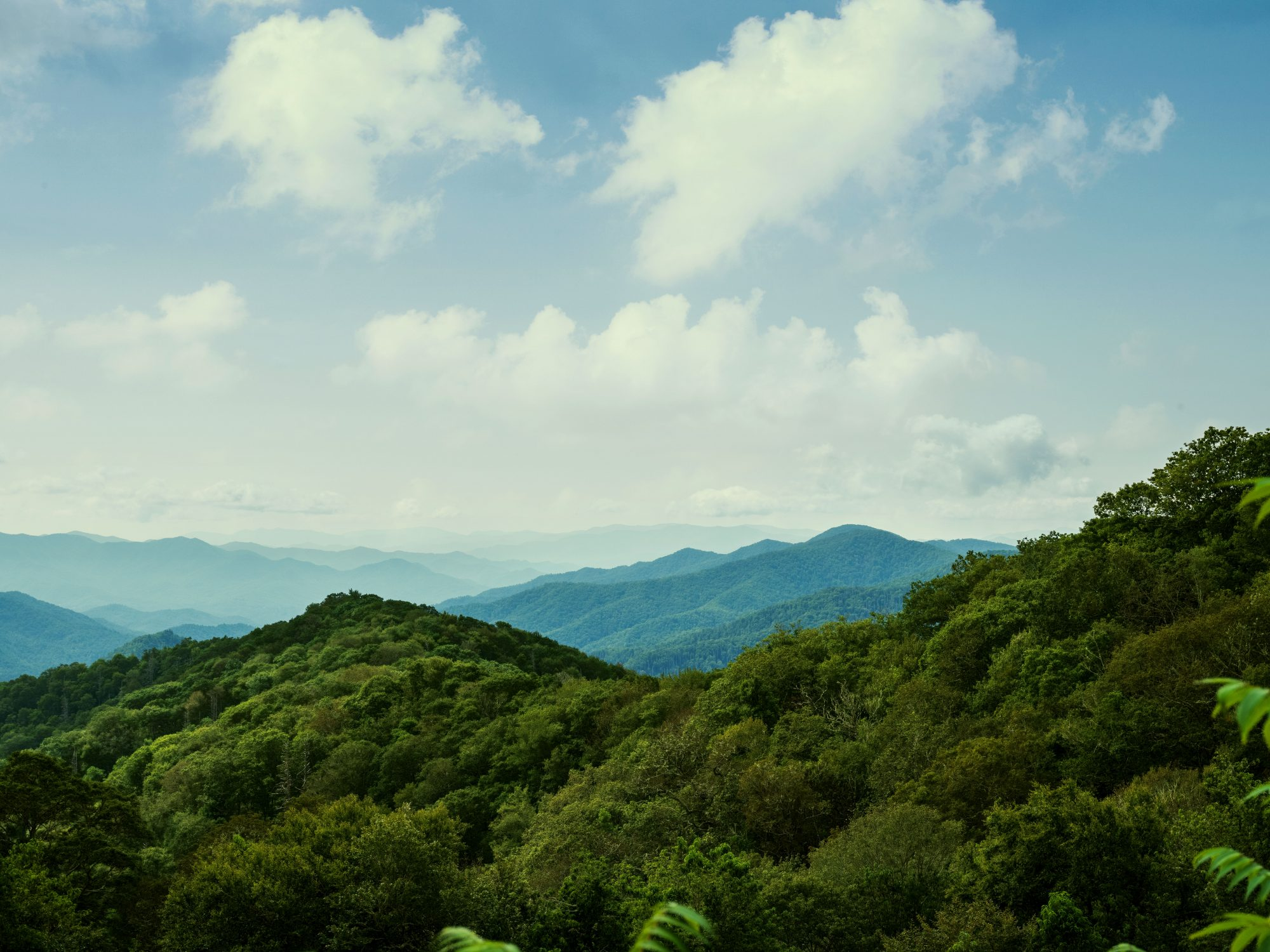 Green Mountain Tops of the Great Smoky Mountains National Park