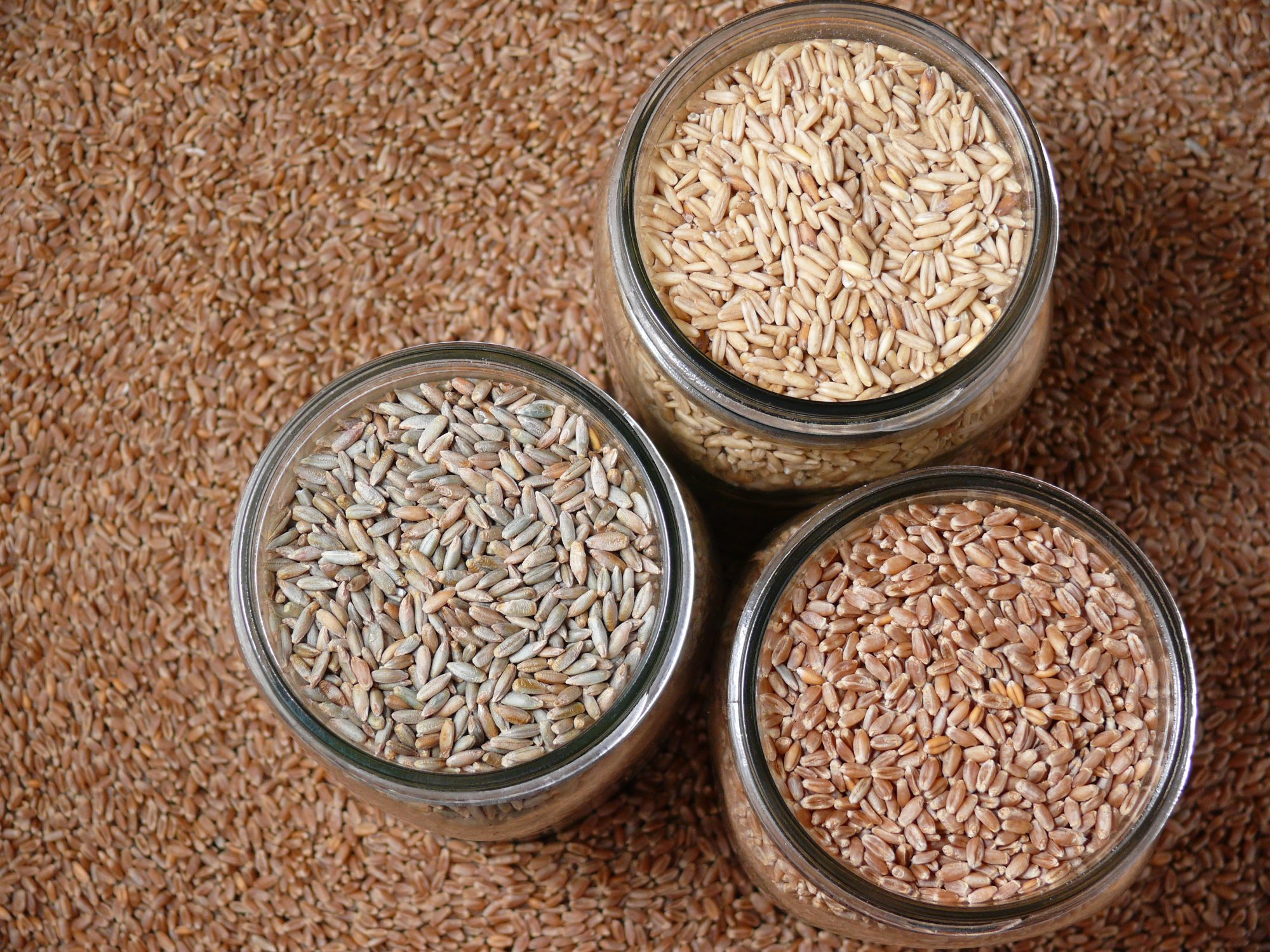 Boiling is Cool, But Here's Why You Should Be Frying Your Grains