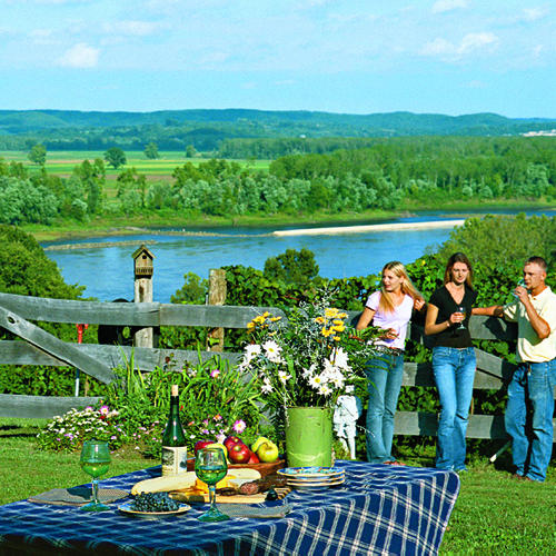 Toast Our Wine Country
