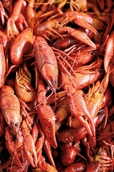 It's Time for a Crawfish Boil: How to Boil Crawfish