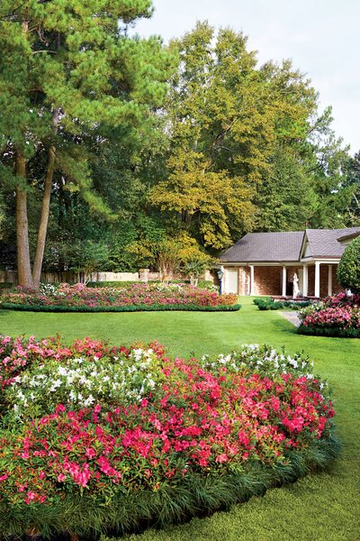 Dont Settle For Scraggly Azaleas Southern Living