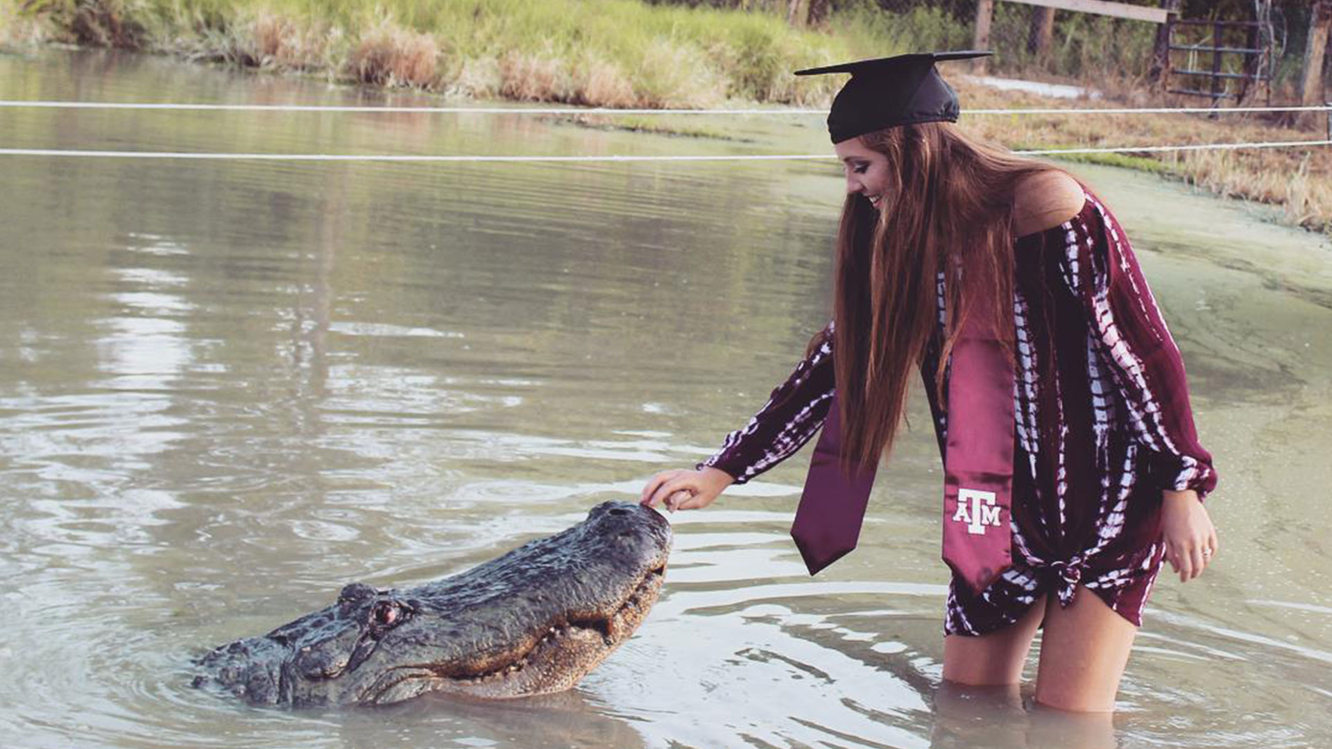 Alligator Graduation Photos