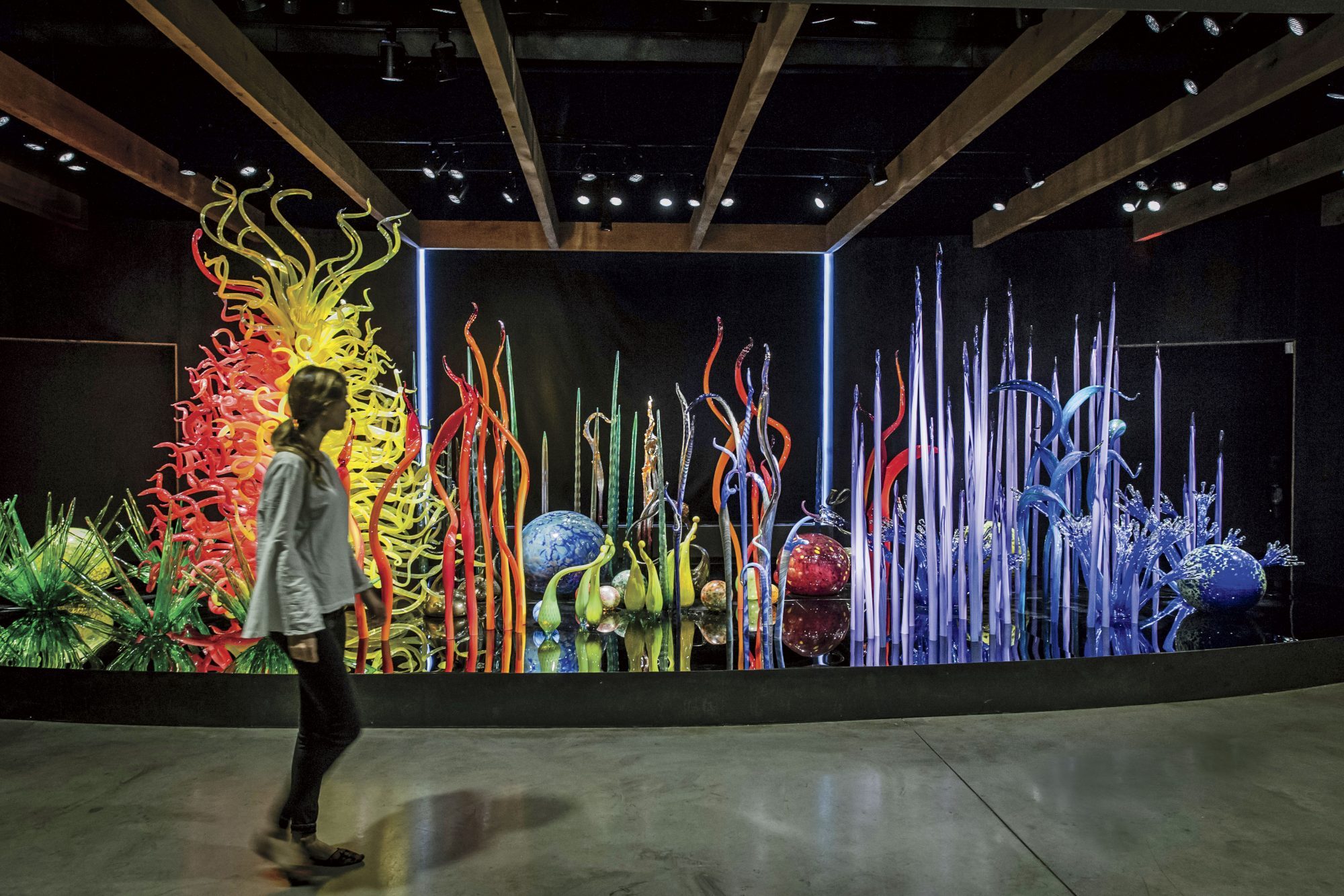 Chihuly Glass in St. Petersburg FL