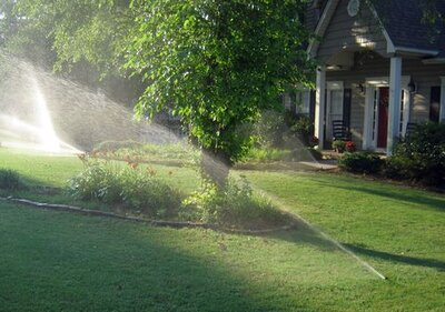 Don't Be a Lawn Watering Dummy - Southern Living