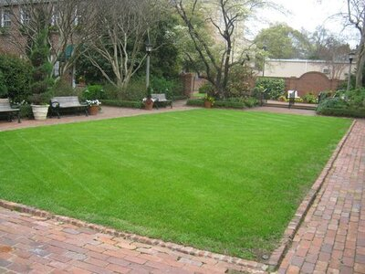 7 Dumb Ways to Feed Your Lawn - Southern Living