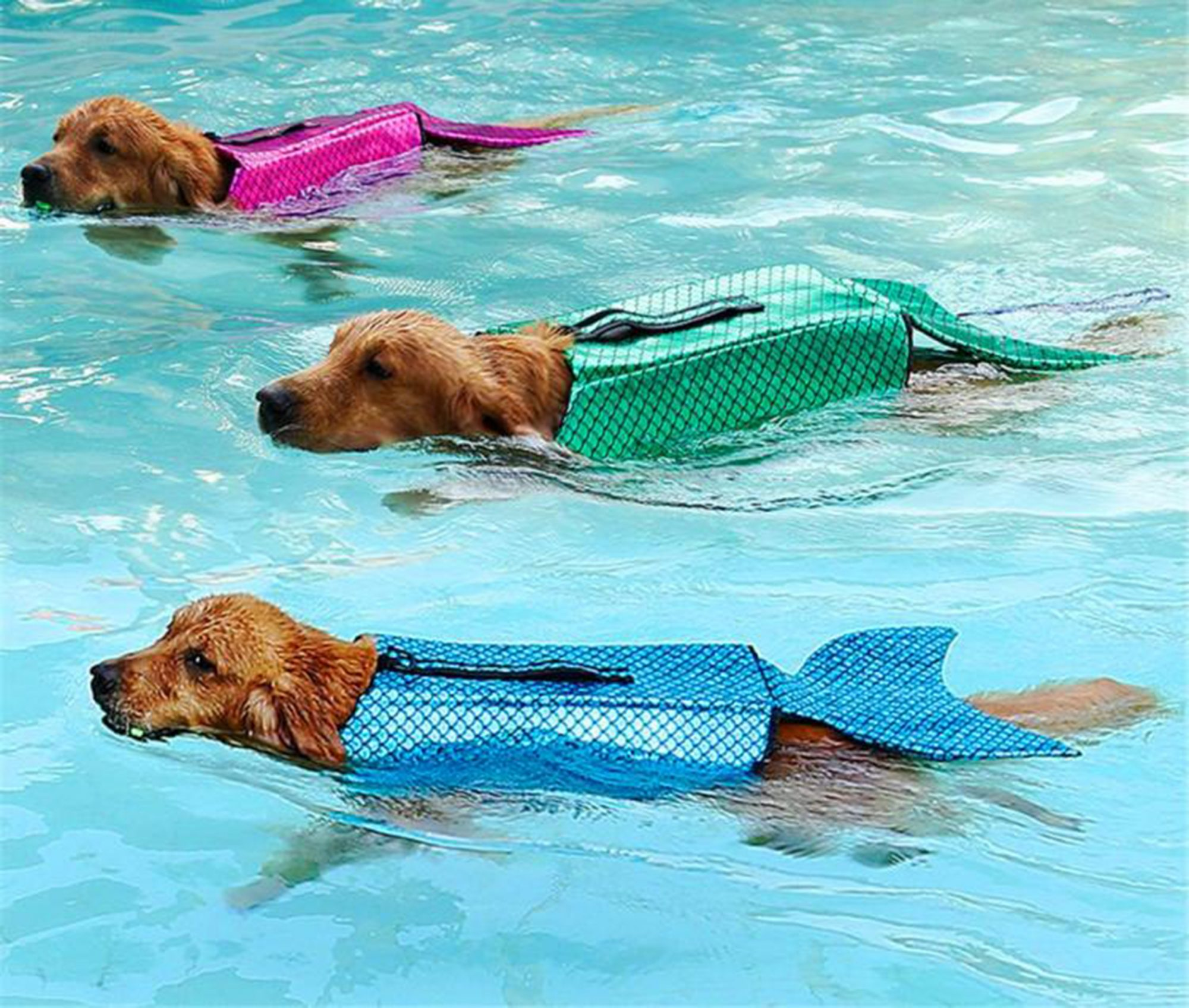Mermaid dog life jacket