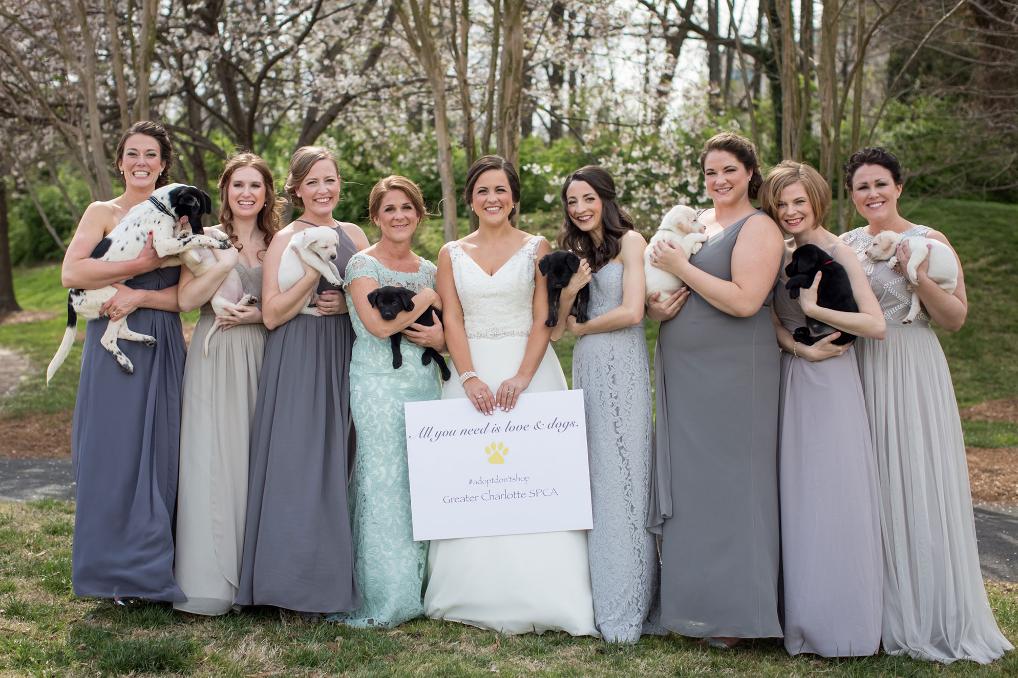 Charlotte Bridal Party Swaps Bouquets for Adoptable Puppies in Most Adorable Wedding Ever