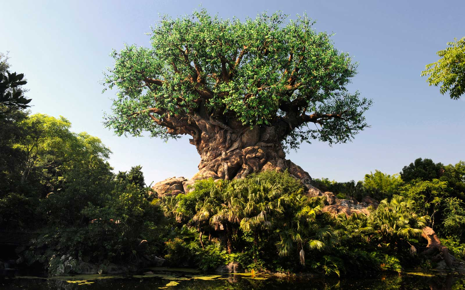 Disney's Animal Kingdom in Orlando, Florida