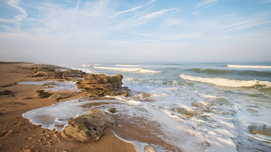 Secluded Southern Beach Vacations: Washington Oaks State Park