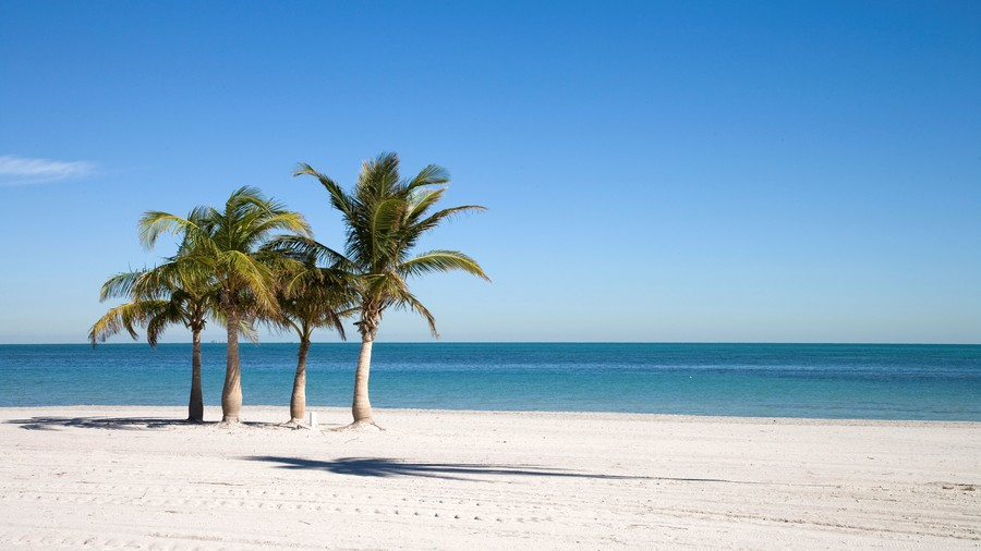 Usa, Florida, Miami, Kery Byscaine, Crandon Beach, (Photo by Marka/UIG via Getty Images)