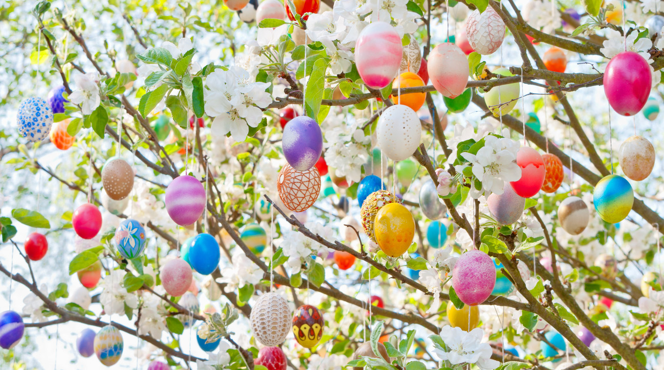 Close Up of Easter Egg Tree