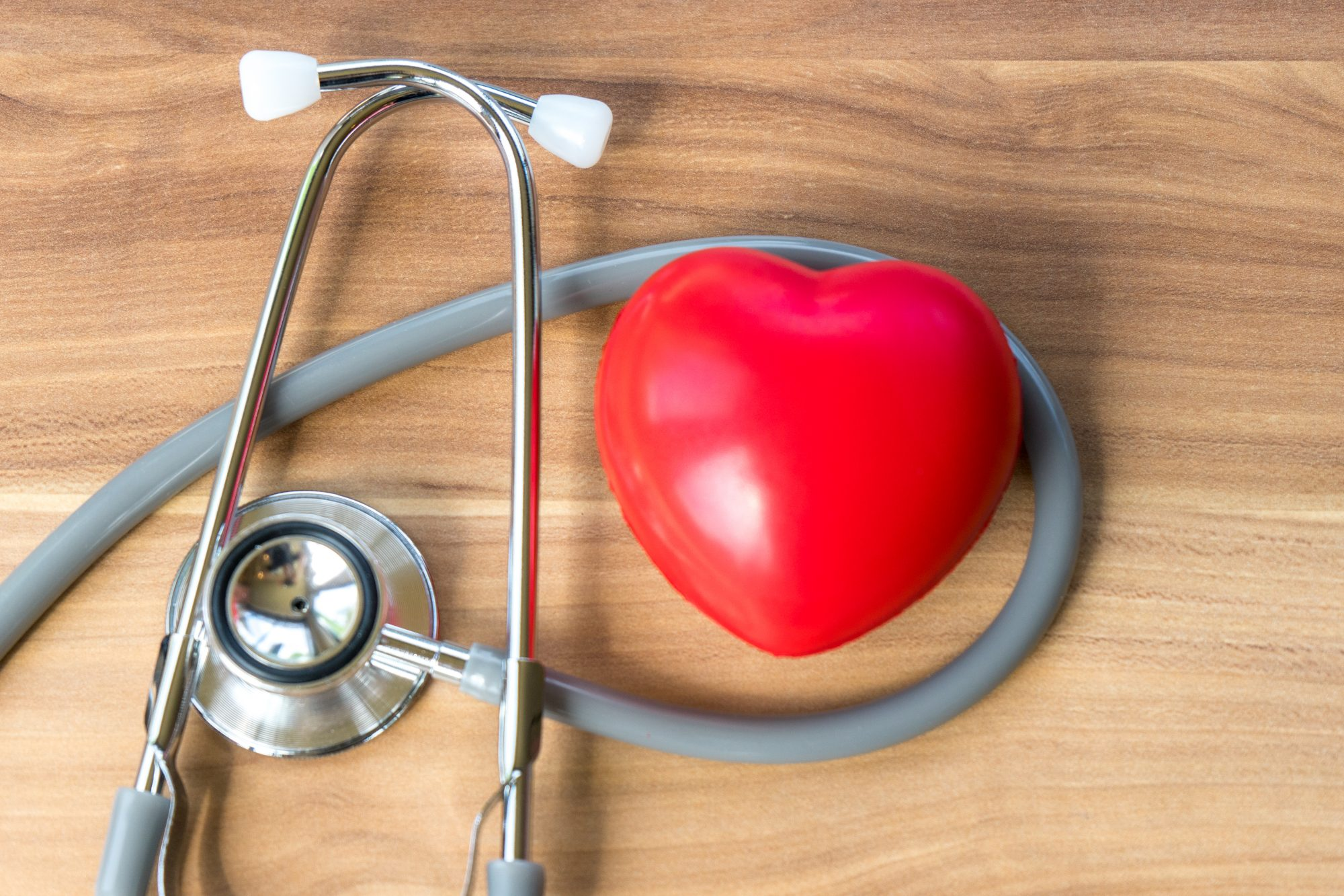 Heart Model and Stethoscope