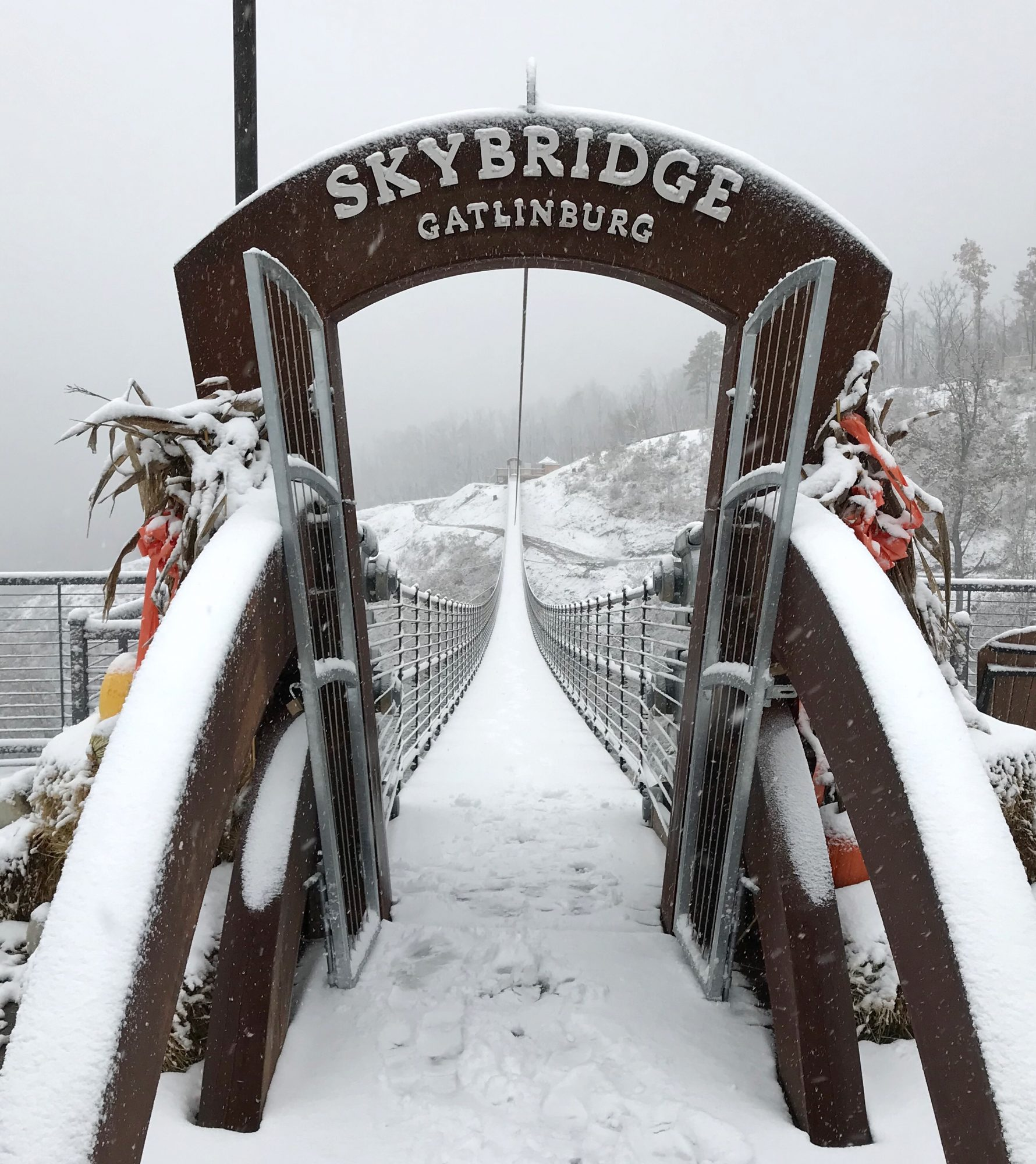 Gatlinburg Skybridge 2