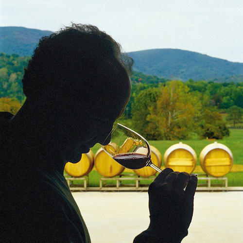 Toast Our Wine Country (VA)