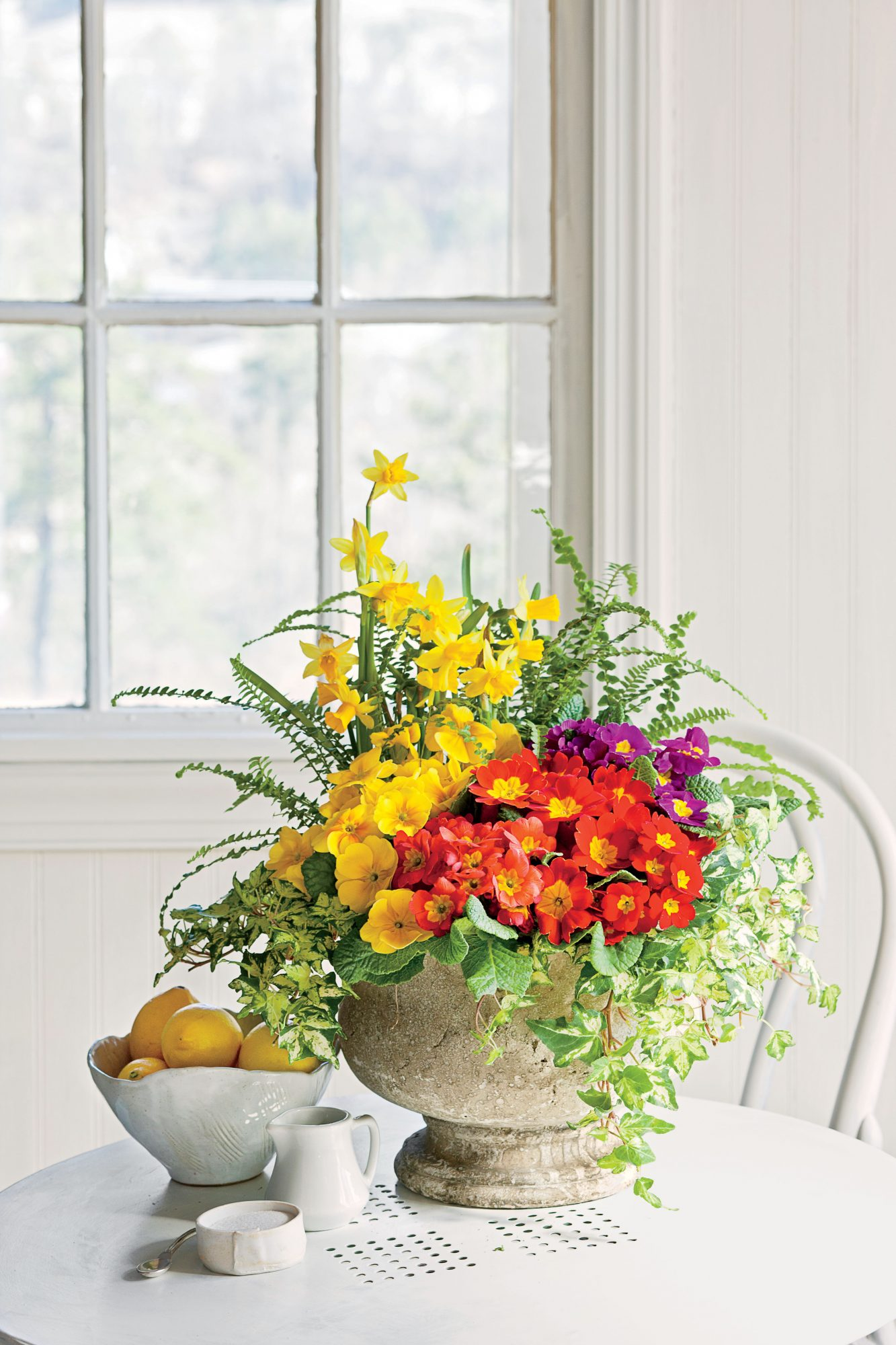 Show Off Winter Color With Primroses