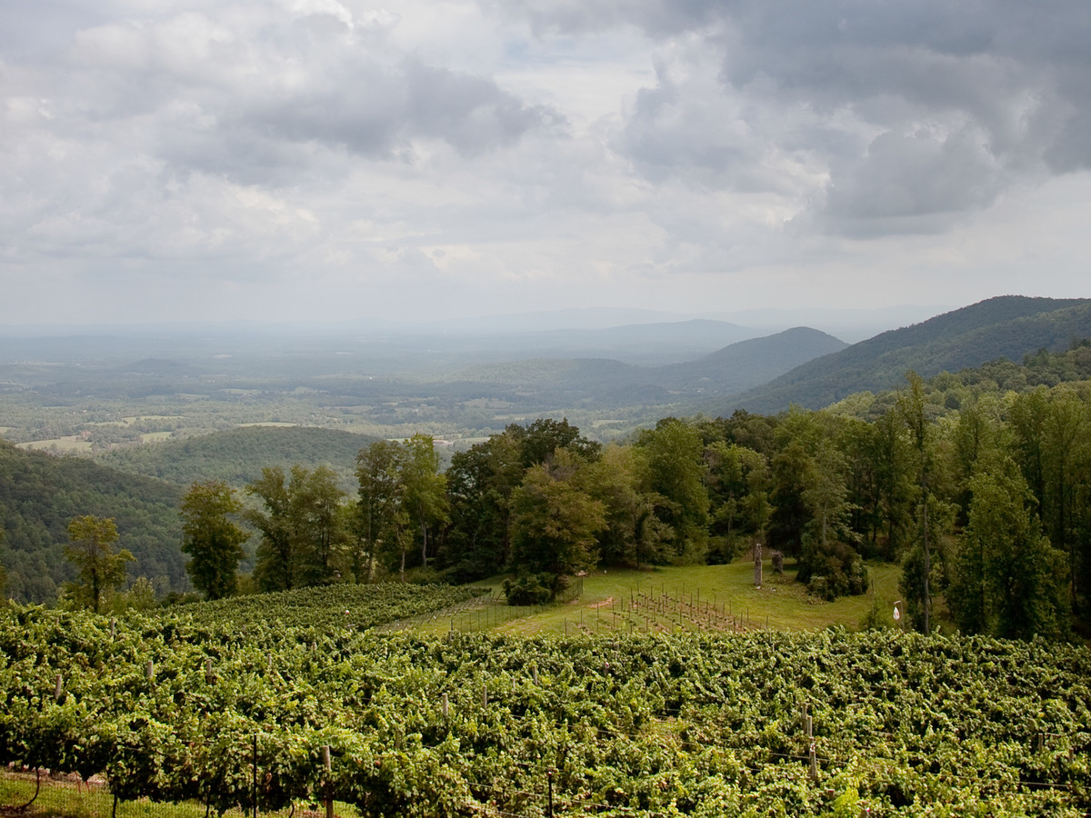 Stone Mountain Vineyards