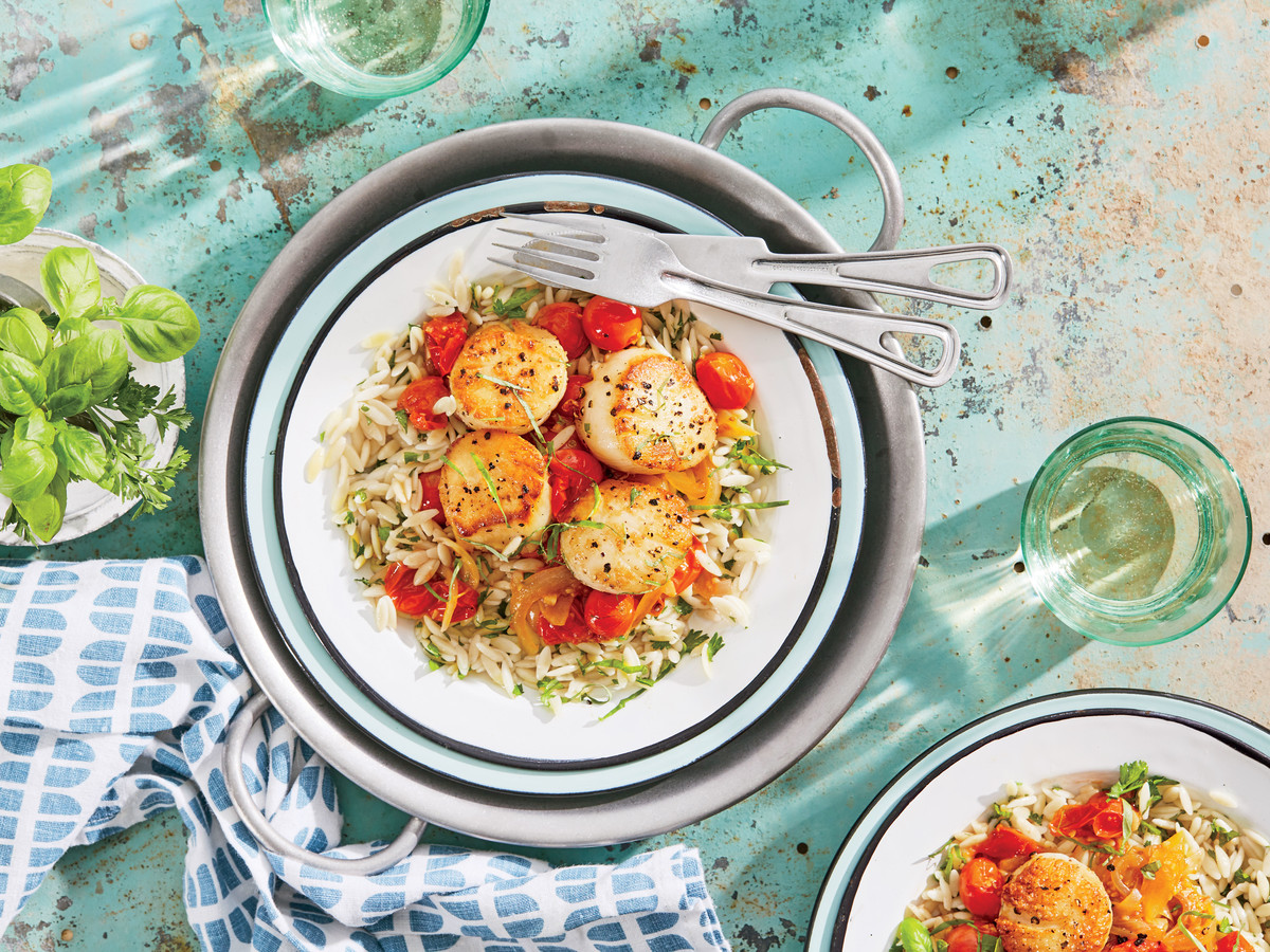 Seared Scallops with Fresh Tomato-Basil Sauce and Orzo