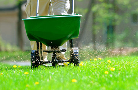 Why should you fertilize your question now? To make money for the fertilizer company? Photo courtesy dexknows.com.