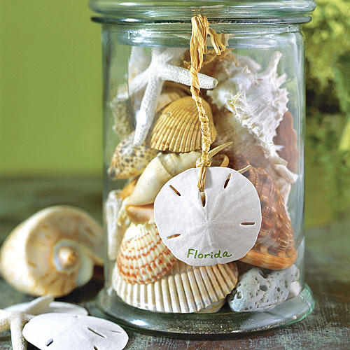 Seashell Container