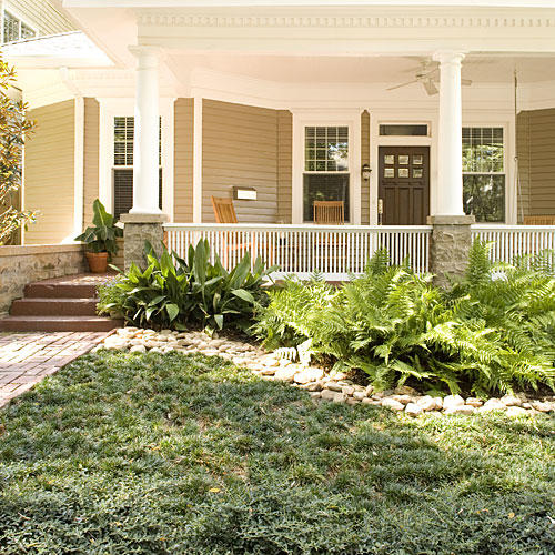 Easy No Mow Lawns Southern Living