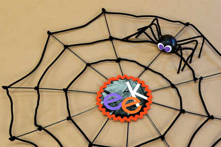 Halloween Spiderweb Decoration Video Image