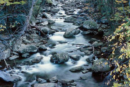 Mountain creek in Great Smoky Mountains national park