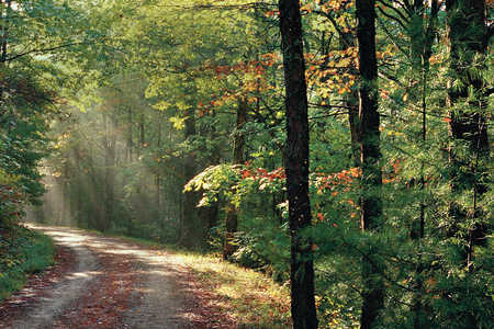 Undiscovered Drives in the Smokies