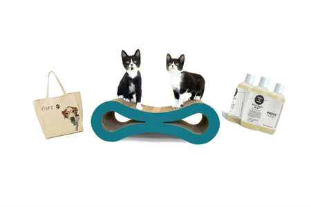 Gift Guide Pets Tout Image