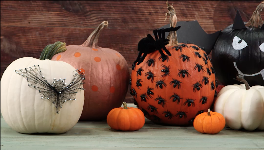 No Carve Pumpkins Compilation