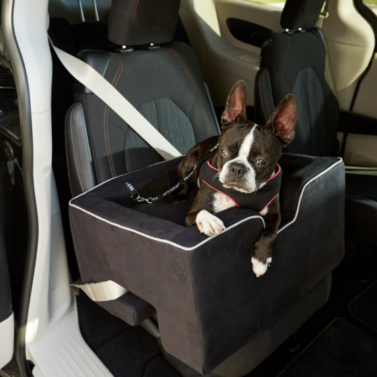 Pet Gear Large Car Booster
