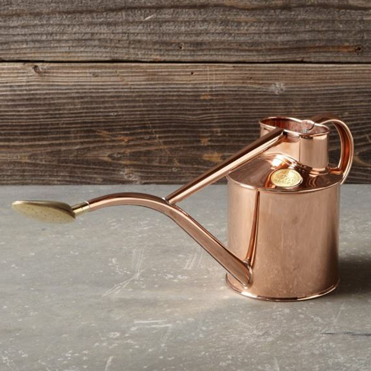 Williams-Sonoma indoor copper watering can photo