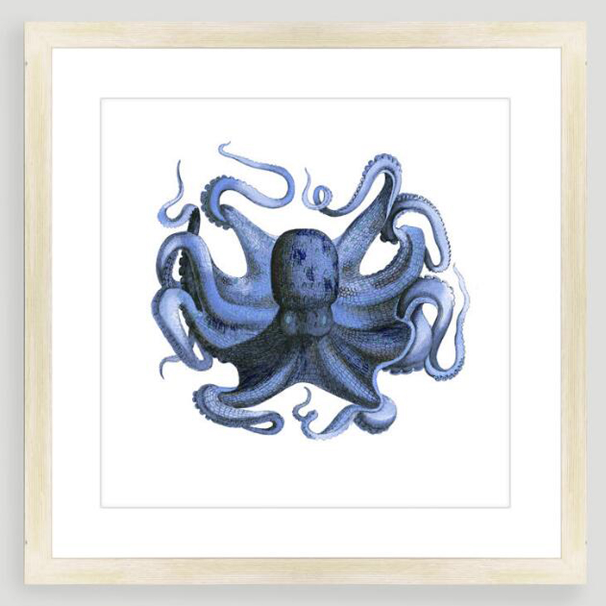 Framed white print with deep blue octopus on it photo