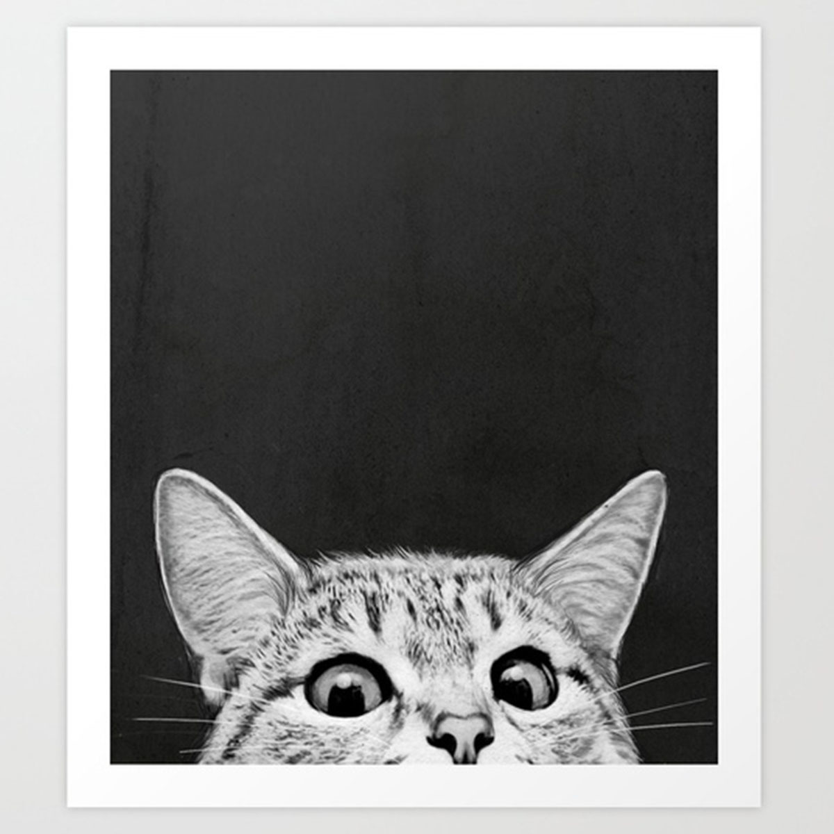 Black, white, and gray print of the top half of a cats face. photo