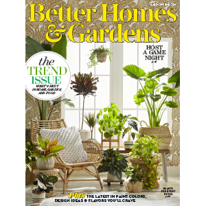 Cover of a magazine featuring a chair and lots of indoor plants. photo