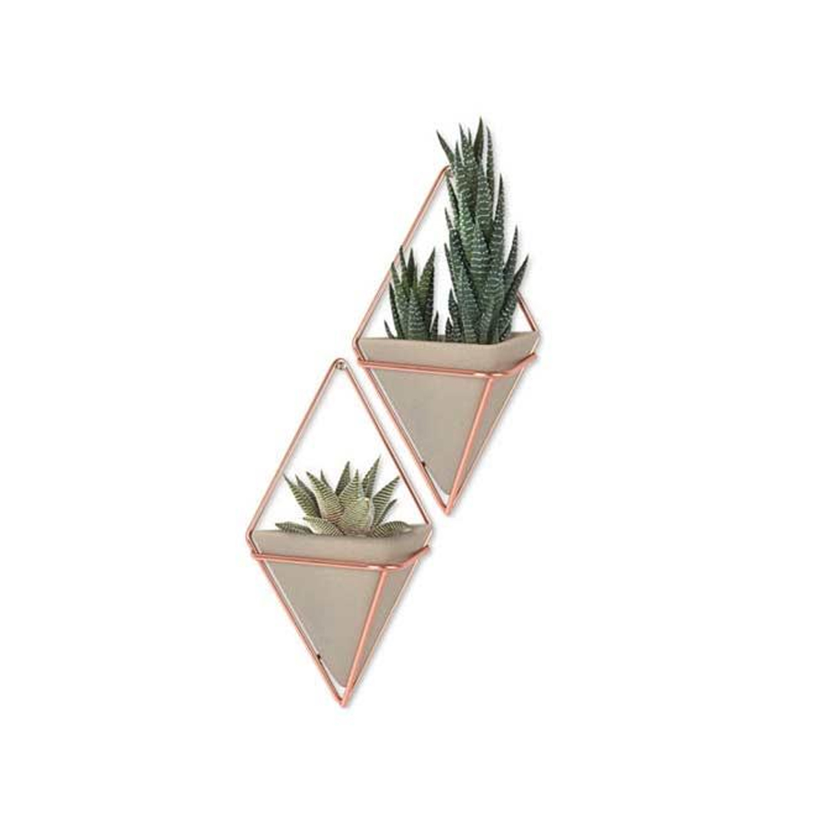 Set of geometric copper vessels that can hold succulents or small trinkets. photo